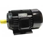 Trifazis asinchroninis elektros variklis 11kW (Y-160M-2)