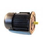Flanšinis trifazis asinchroninis elektros variklis 0.75kW (Y-90S-6F)